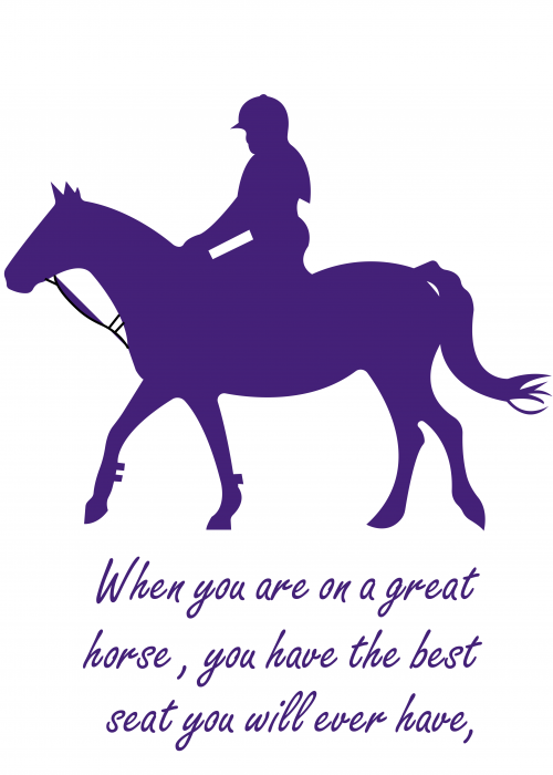 Horse Wall Stickers & Decals